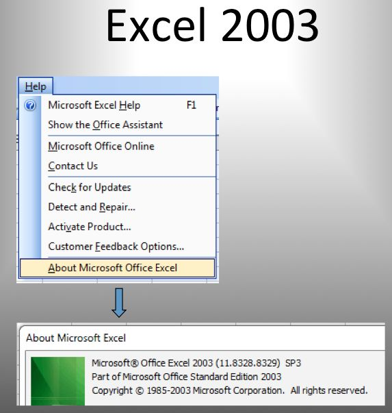 About Excel Versions 2003