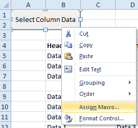 Assign Macro to Form Control