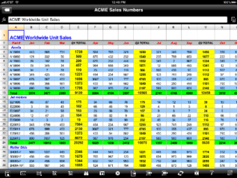 DocsToGo Premium Spreadsheet on iPad