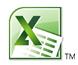 Excel 2010 icon